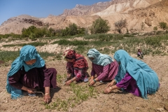 Women are trained to plant and to harvest instead of staying at home. They learn about agriculture. this knowledge help them, and their family to change their food habits by eating more vegetables.