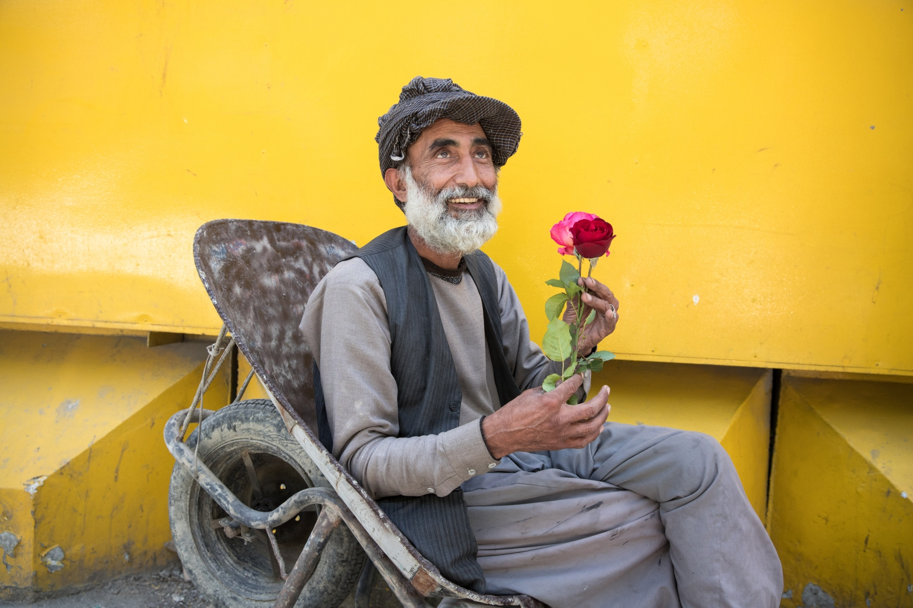 Mohammed Ehsan lives in the Lab e Darya district of Kabul, but he comes to work at Shah e now in the center of the capital. His job most often consists of carrying customers' bulky purchases in his wheelbarrow. He earns around 300/400 afghanis per day (around 5 euros). He has always loved flowers a lot, and roses are his favorite flowers. He finds them very delicate.